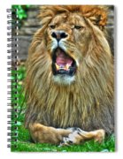 Thunder Vocals Of Lazy Boy At The Buffalo Zoo Spiral Notebook