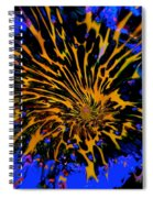 Thunderclap Tunnel Spiral Notebook