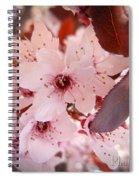 Thundercloud Spiral Notebook