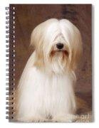 Tibetan Terrier Dog Spiral Notebook