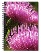 Tickled Thistle Spiral Notebook