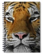 Tiger 1 Spiral Notebook