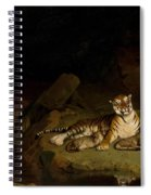 Tiger And Cubs Spiral Notebook