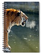 Tiger Breathing Into Cold Air By The Water Spiral Notebook