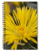 Tiger Claw Plant Spiral Notebook