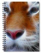 Tiger Face Fractal Spiral Notebook