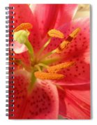 Tiger Lily Spiral Notebook