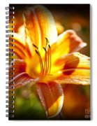Tiger Lily Flower Spiral Notebook