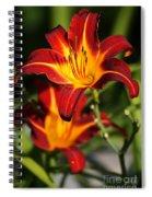 Tiger Lily0243 Spiral Notebook