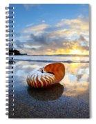 Tiger Nautilus Sunrise Spiral Notebook