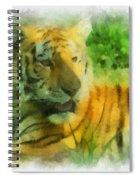 Tiger Resting Photo Art 01 Spiral Notebook