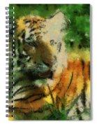 Tiger Resting Photo Art 03 Spiral Notebook