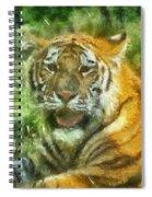 Tiger Resting Photo Art 05 Spiral Notebook