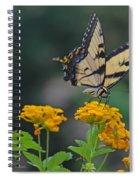 Tiger Swallowtail And Lantana Spiral Notebook