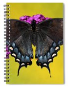Tiger Swallowtail Butterfly, Dark Phase Spiral Notebook