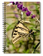 Tiger Swallowtail Butterfly Feeding Spiral Notebook