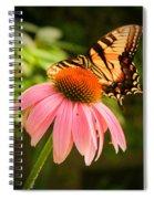 Tiger Swallowtail Feeding Spiral Notebook