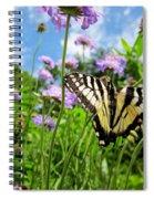 Tiger Swallowtail On Pincushion Flowers Spiral Notebook