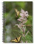Tiger Swallowtails Spiral Notebook