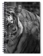 Tiger With A Fixed Stare Spiral Notebook