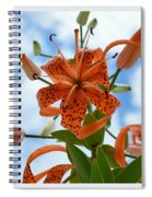 Tigers In The Clouds 8566 Spiral Notebook