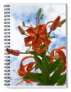 Tigers In The Clouds 8567 Spiral Notebook