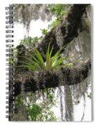 Tillandsia Spiral Notebook