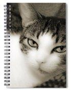Tilly Little Miss Attitude Spiral Notebook