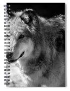 Timber Wolf Spiral Notebook