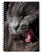 Time For A Nap Spiral Notebook