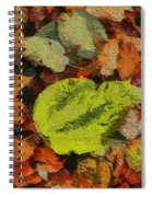 Time Of The Season Spiral Notebook
