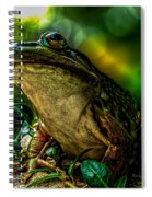 Time Spent With The Frog Spiral Notebook