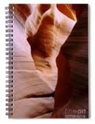 Timeless Spiral Notebook