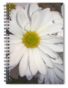 Timeless Sunshine Daisy Spiral Notebook