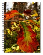 Tinged In Red Spiral Notebook
