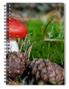 Tiny Amanita In Norway Spiral Notebook
