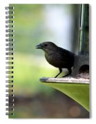 Tiny Seed For A Tiny Bird Spiral Notebook