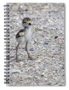 Tiny Survivor Spiral Notebook
