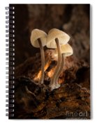 Tiny Toadstools Spiral Notebook