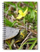 Tiny Turtle Close Up Spiral Notebook
