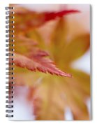 Tip Spiral Notebook