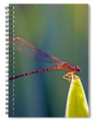 Tip Of The Grass Spiral Notebook