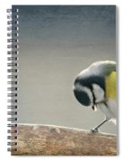 tit Spiral Notebook
