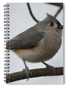 Tit Mouse 201301 Spiral Notebook