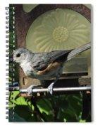 Titmouse 2 Spiral Notebook
