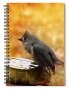 Titmouse In The Rain Spiral Notebook