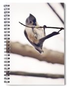 Titmouse Pull-ups Spiral Notebook