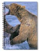 Tk0334, Thomas Kitchin Grizzlyalaskan Spiral Notebook