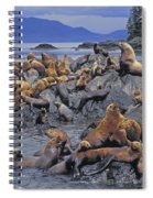 Tk0440, Thomas Kitchin Steller Sea Spiral Notebook