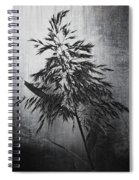 To Stand Alone  Spiral Notebook